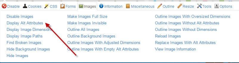 צילום מסך מתוך Web Developer