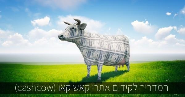 המדריך לקידום אתרי קאש קאו (cashcow)